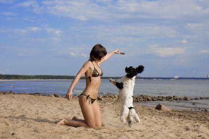 समुद्र तट पर एक कुत्ते के साथ लड़की