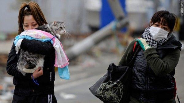 जापान के पशु पीड़ितों को बचाने के लिए दौड़ने वाले पशु राहत समूह