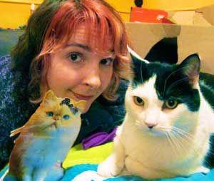 एक बिल्ली महिला से पूछो: मैं अपनी नई बिल्ली के साथ बाहर निकलने के लिए अपनी पुरानी बिल्ली कैसे प्राप्त करूं?