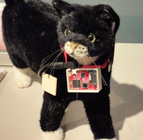 सोनी द्वारा अनावरण किए गए बिल्लियों के लिए ऑटो-ट्विटर डिवाइस