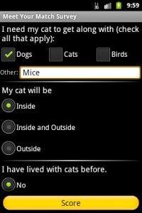 बिल्ली गोद लेना? इसके लिए एक ऐप है