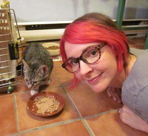 कैटस्टर मूल वीडियो: अपने घर में बिल्ली के भोजन के चोरों के साथ क्या करना है