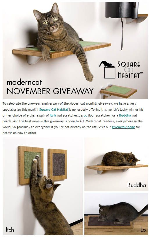 Giveaway: चिकना वर्ग बिल्ली निवास scratchers या perch