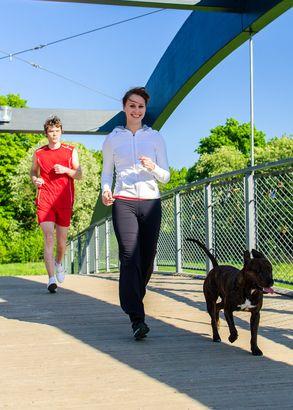 युगल पुल पर कुत्ते के साथ चल रहा है