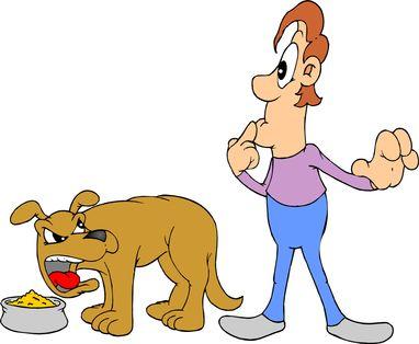कुत्ते के भोजन आक्रामकता को कैसे रोकें