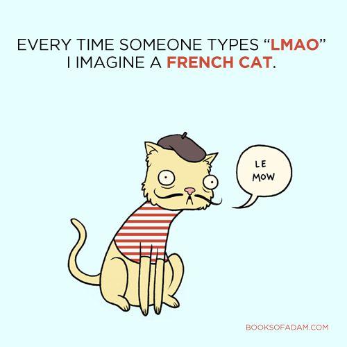 एक बिल्ली मेमो lmao कैसे होगा?