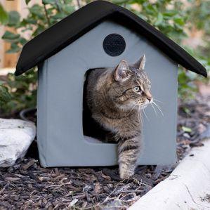 गर्म बिल्ली घर