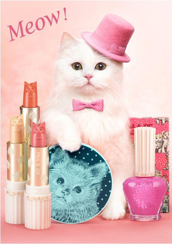 2012 के लिए बिल्ली फैशन में हमारे पसंदीदा क्षण