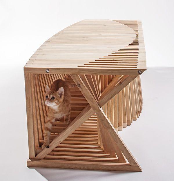 पिक्स हम प्यार करते हैं: आर्किटेक्ट अगले स्तर पर बिल्ली आश्रय लेते हैं