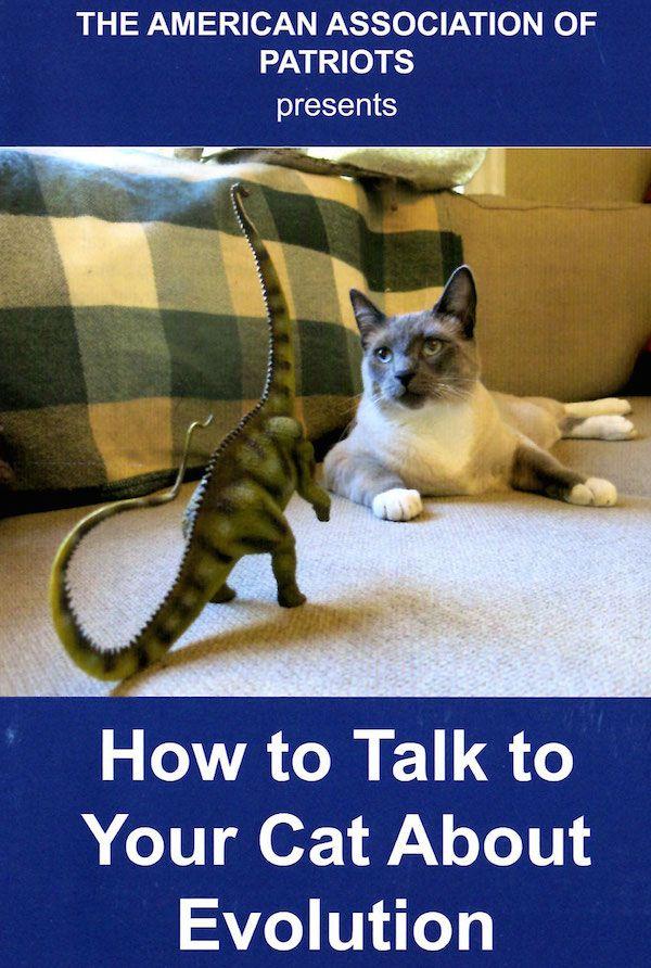 यूसा के लिए आपकी बिल्ली क्या कर सकती है? हम देशभक्तों के अमेरिकी संघ से पूछते हैं