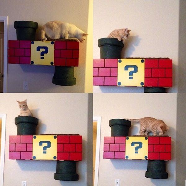 आपकी बिल्ली को स्पष्ट रूप से इस सुपर मारियो-थीम्ड क्लाइंबिंग बॉक्स की आवश्यकता है